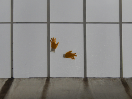 Photo for Gloves left on the window of the roof by worker worked on there - Royalty Free Image