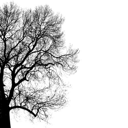 Ilustración de black silhouette of tree - Imagen libre de derechos