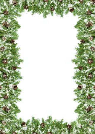 Foto de Christmas background with snow, and cones isolated on white - Imagen libre de derechos