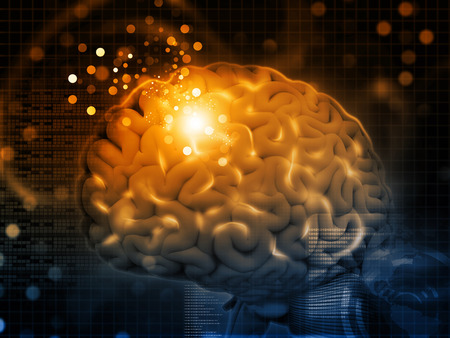 Foto de 3d render of Brain functions, synapses - Imagen libre de derechos