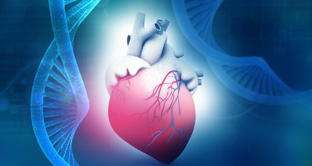 Foto de Human heart anatomy with dna abstract background. 3d illustration - Imagen libre de derechos