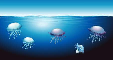Ilustración de Illustration of the jellies - Imagen libre de derechos