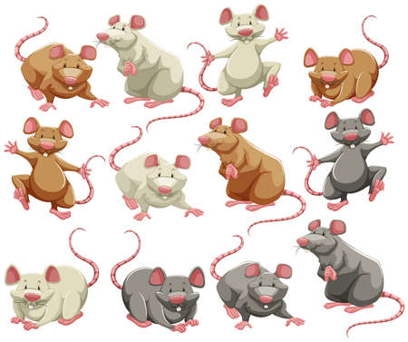 Ilustración de Mouse and rat in different colors - Imagen libre de derechos