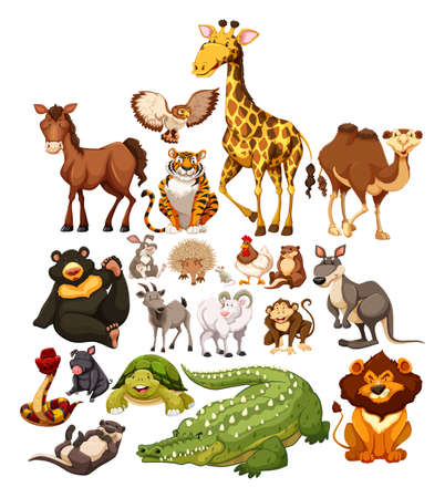 Photo pour Different type of wild animals illustration - image libre de droit
