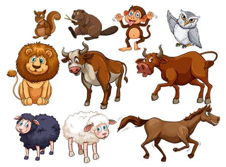 Illustration pour Wild animals in various types illustration - image libre de droit