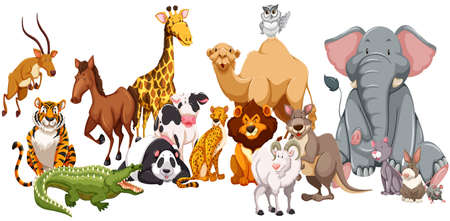 Illustration pour Different kind of wild animals illustration - image libre de droit