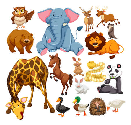 Photo pour Wild animals on white illustration - image libre de droit