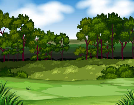 Illustration pour Forest scene with trees and field illustration - image libre de droit