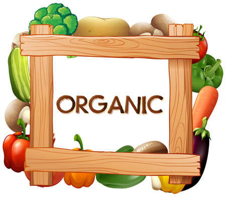 Frame template with fresh vegetables illustration