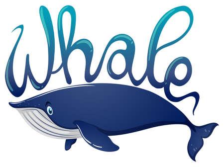 Illustration pour Word for whale and blue whale on white background illustration - image libre de droit