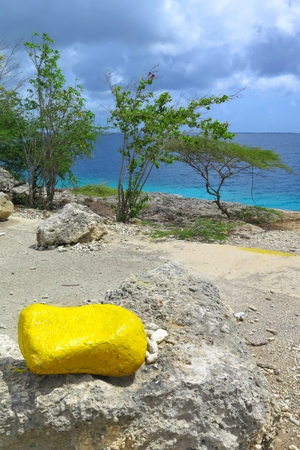 Photo for Yellow bright stone on the rocky tropical exotic beach with wild bush. - Royalty Free Image