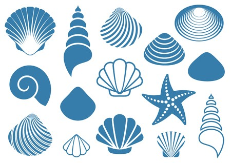 Ilustración de Set of various blue sea shells and starfish - Imagen libre de derechos