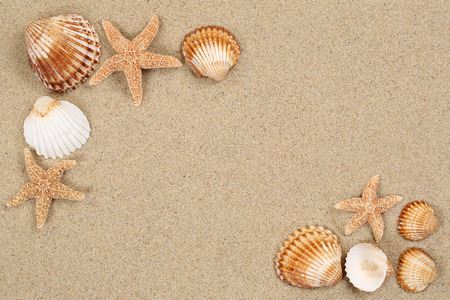 Photo for Beach scene in summer vacation holiday with sand, sea shells and stars and copyspace - Royalty Free Image