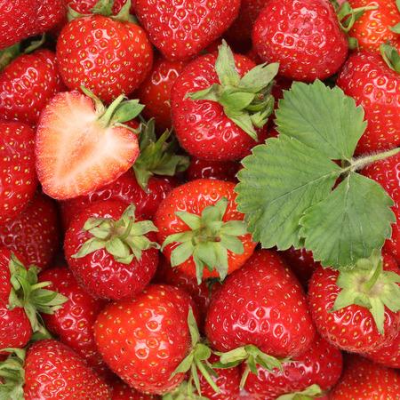 Foto de Strawberries berry fruits strawberry red berries background with leaf - Imagen libre de derechos