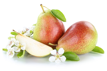 Photo pour Pears pear fresh fruit fruits isolated on a white background - image libre de droit