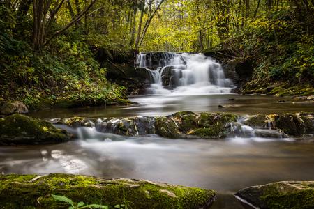 Photo pour Waterfall in Dolzyca, Bieszczady, Poland - image libre de droit