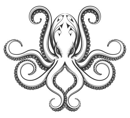 Illustrazione per Octopus drawn in engraving vintage style. Vector illustration isolated on white background. - Immagini Royalty Free