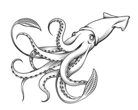 Illustrazione per Giant Squid drawn in Engraving tattoo style. Vector Illustration. - Immagini Royalty Free
