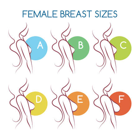 Illustrazione per Woman Silhouettes with different breast sizes from A to F. Female Busts from small to large in side view. Vector illustration. - Immagini Royalty Free