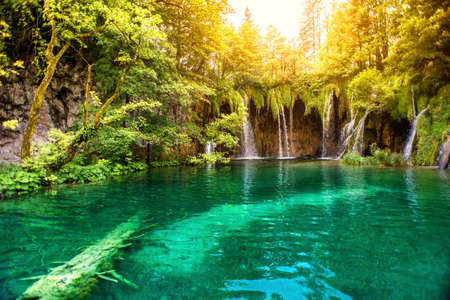 Foto per Nature wonderland, lake waterfall in national park on a sunny summer day with sunlight. Waterfalls in deep forest, plitvice national park - Immagine Royalty Free