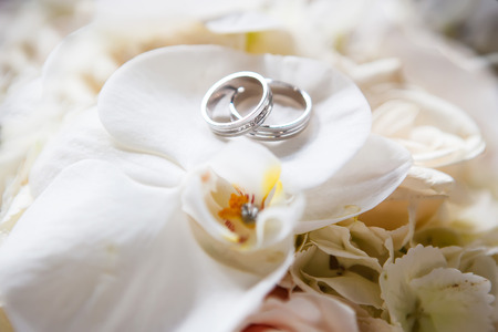 Photo pour Wedding rings on the roses - image libre de droit