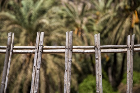 Foto de Closeup detail of the old wooden fence in Agadir, Morocco - Imagen libre de derechos