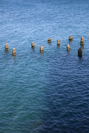 Photo for Remains of the old wooden pillars in the sea - Royalty Free Image