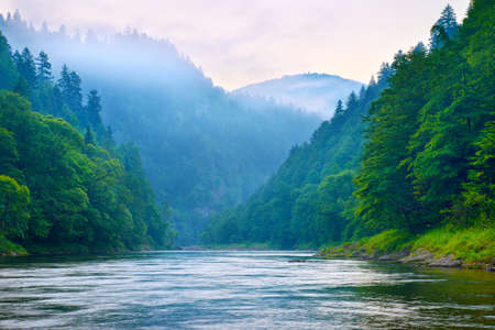 The gorge of mountain river in the morning  Dunajec, Pieniny