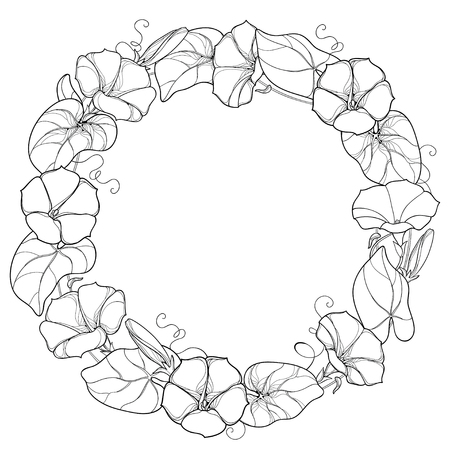 Illustration pour Round wreath with outline Ipomoea or Morning glory flower, leaf and bud in black isolated on white background. Perennial climbing plant in contour style for summer design and coloring book. - image libre de droit