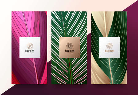 Illustration pour Vector set packaging templates Leaves of nature luxury or premium products.logo design with trendy linear style.voucher discount, flyer, brochure.menu book cover vector illustration.greeting card background. - image libre de droit