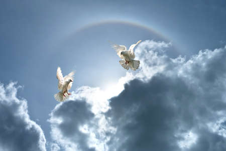 Foto de White doves against clouds and rainbow concept for freedom, peace and spirituality - Imagen libre de derechos