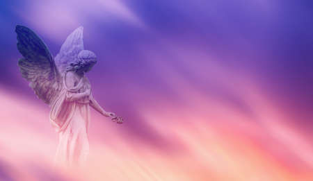 Photo for Beautiful angel in pink and blue sky concept of religion - Royalty Free Image