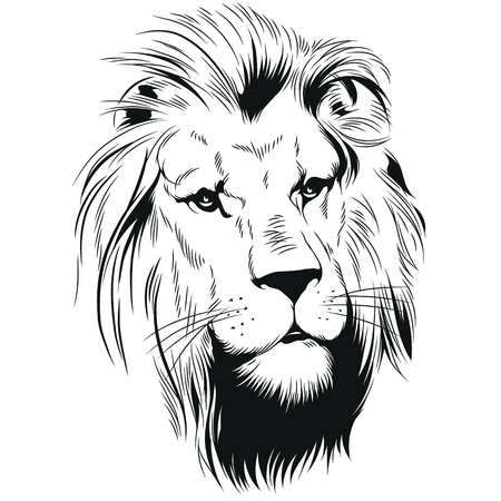 Illustration for Vector stock illustration. Head of a lion. King of beasts. - Royalty Free Image