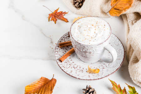 Photo pour Autumn hot drinks. Pumpkin latte with whipped cream, cinnamon and anise on a white marble table, with a sweater (blanket), autumn leaves and fir cones. Copy space - image libre de droit