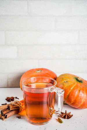 Foto de Spicy pumpkin tea, autumn hot drink glass cup, with pumpkins, cinnamon and spices on white marble background copy space - Imagen libre de derechos