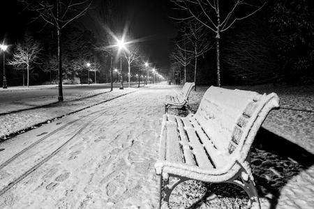 Foto de Night in the park after snowfall. White road, benches, street lamps highlighting alley. Strasbourg, France - Imagen libre de derechos