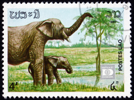Foto de LAOS - CIRCA 1987: a stamp printed in Laos shows Indian elephant, elephas maximus indicus, is one of three recognized subspecies of the Asian elephant, circa 1987 - Imagen libre de derechos