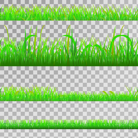 Illustration pour Seamless green gras set, seamless strip of green grass set on transparent background, vector - image libre de droit