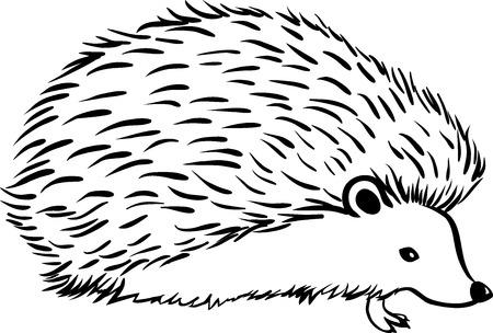 Ilustración de Hedgehog stylization icon. Line sketch - Imagen libre de derechos