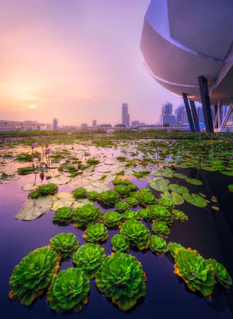 Foto de Singapore skyline background - Imagen libre de derechos