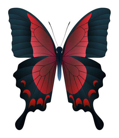 Photo pour Beautiful butterfly isolated on a white background. Papilio pericles butterfly. 3D illustration - image libre de droit