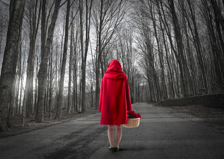 Photo for Little Red Riding Hood in the woods - Royalty Free Image