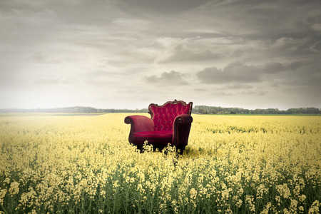 Foto de Red chair in a field full of flowers - Imagen libre de derechos