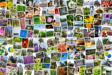 Asymmetrical mosaic mix collage of 200 photos of life style, people, different places, landscapes, flowers, insects, objects, sport and animals shot by myself during Europe travels