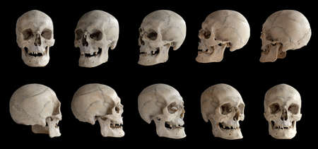 Photo pour Human anatomy. Human skull. Collection of rotations of the skull. Skull at different angles. Isolated on black background. - image libre de droit