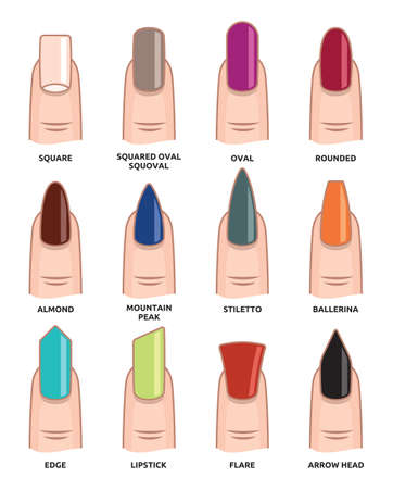Illustration for Different nail shapes - Fingernails fashion Trends - Royalty Free Image