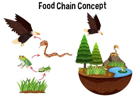 Ilustración de Science Food Chain Concept illustration - Imagen libre de derechos