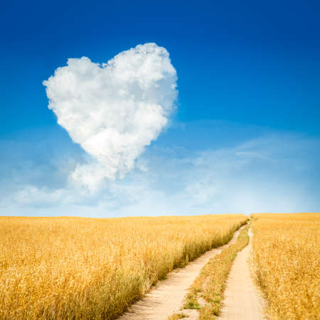 Photo pour Heart Shaped Cloud and Yellow Field Landscape. Summer Blue Sky with Copy Space. Love and Valentine's Day Concept. - image libre de droit