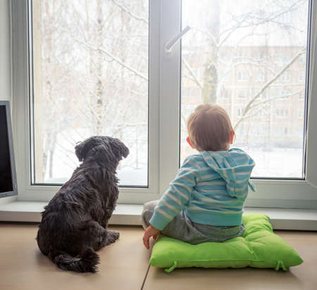 Photo pour Baby with Dog Looking through a Window in Winter. Rear View. Boy and Pet Friends Concept. Toned Photo with Copy Space. - image libre de droit