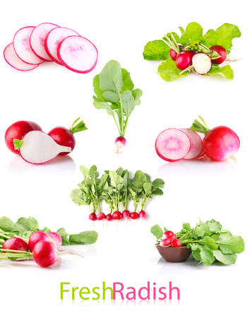 set juicy radish with green leaves isolated on white background